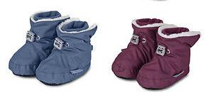 bootes22