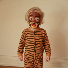 TigerFasching