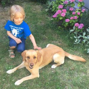 Wie Kinder Hunden sicher begegnen